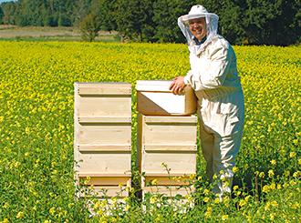 Bienen,Imkereibedarf Zander Stabiler Klappgriff für Holzbeute Dadant Imkerei